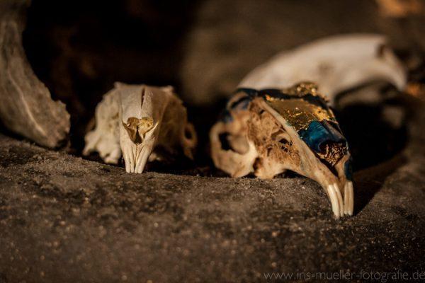 skull2_2